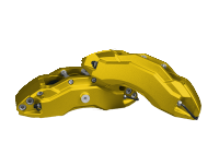 Calipers 3607 PP06